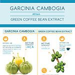 Garcinia Cambogia vs Green Coffee Bean Extract