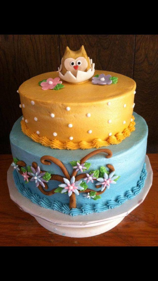 baby shower owl cake cakes pinterest