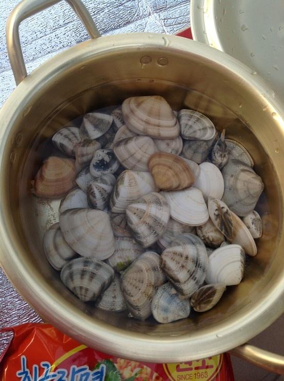 수렵활동 산출물!  동해의 깨끗함이 반했다. 바닷가 산책하다가 물속에 훤히 보이는 조개들... 라면에 퐁당퐁당~#Pin By:Pinterest++ for iPad#