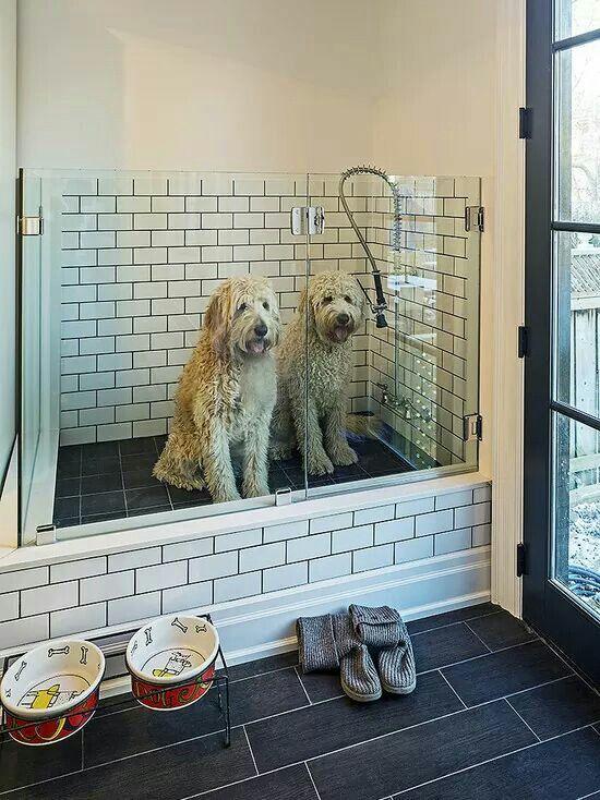 Dog Wash Station For The Home Pinterest