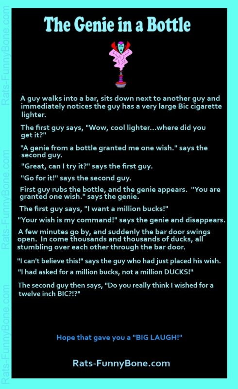 The Genie in a Bottle Joke   For the Home   Pinterest