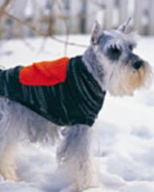 Free dog sweaters knitting patterns, a free camo dog sweater knitting