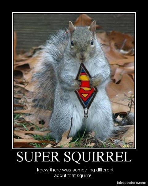 Super squirrel Motivational Pinterest