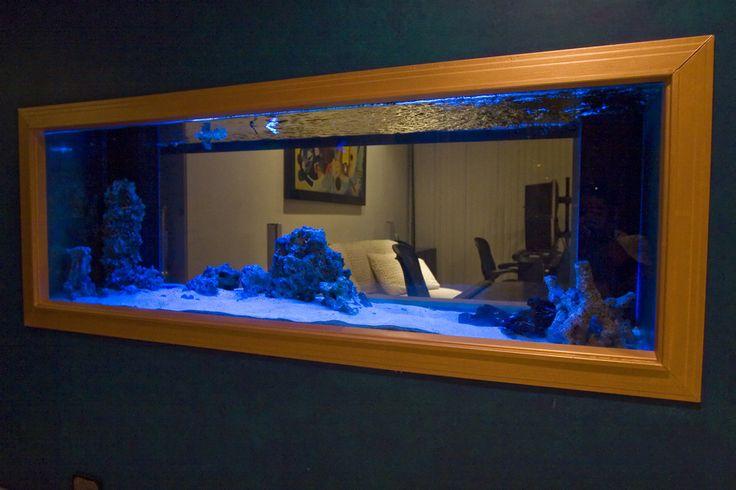 Wall fish tank aquarium pinterest for Fish tank in wall