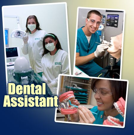 Dental Assistant what are the main subjects in school