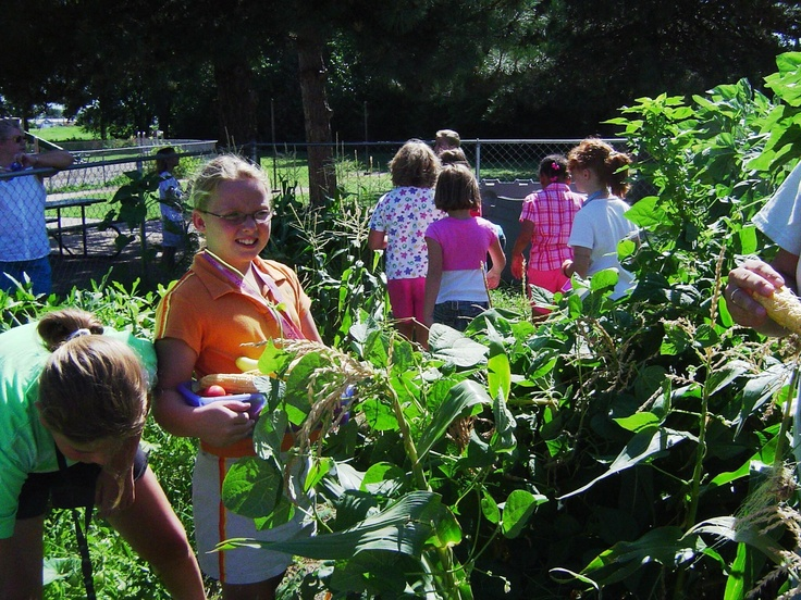 Jr. Master Gardeners - Gardening With Youth