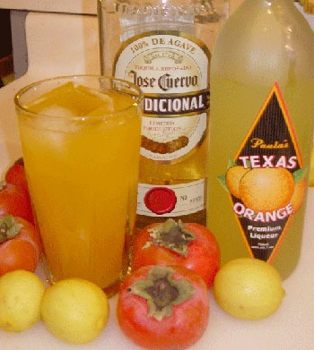 Persimmon margarita | It's 5 o'clock somewhere | Pinterest