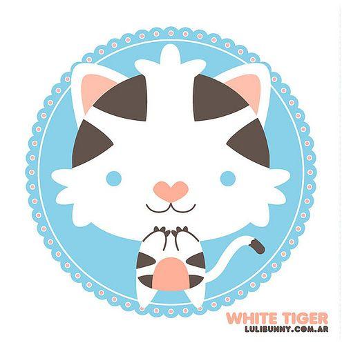 ::: white tiger ::: by Luli Bunny, via Flickr