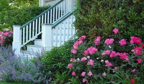Landscaping front porch landscape ideas pinterest for Front porch landscaping designs