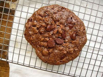 Flourless Double Chocolate Pecan Cookies | Cookies | Pinterest
