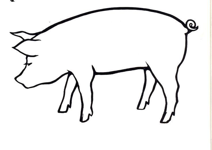 Line Drawing Pig Face : Pin by cheryl krump on art pinterest