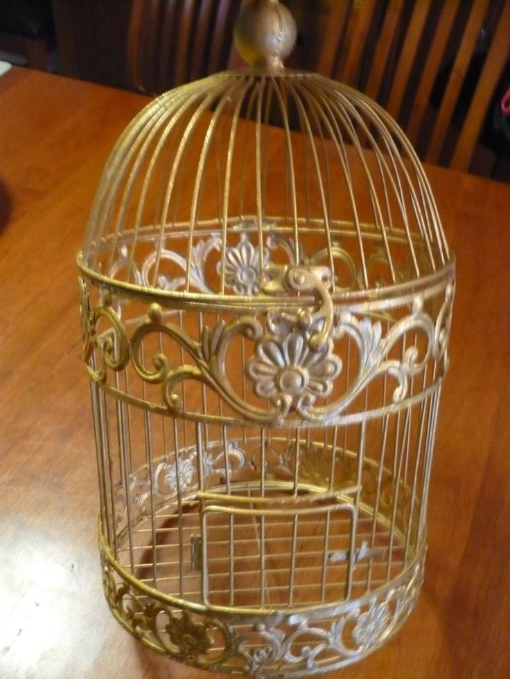 Gold colored wire bird cage 18 inches tall chic decorative for Cage a oiseaux decorative