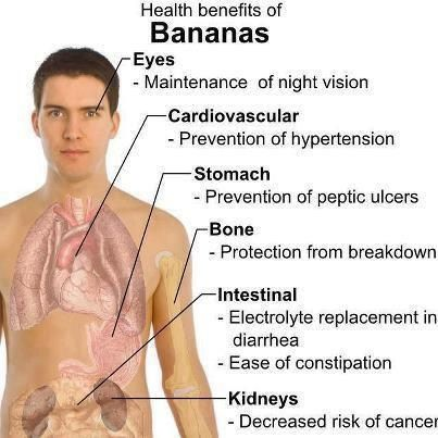 Permalink to Red Banana Benefits