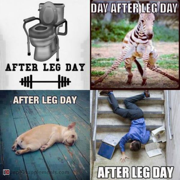 Leg-end after leg-day #fitness #humor | Gym Memes | Pinterest