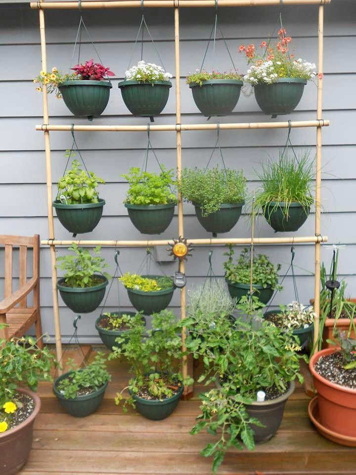 Hanging herb garden my secret garden pinterest