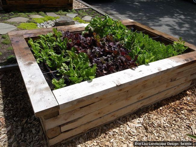Potager jardin pinterest for Jardin potager
