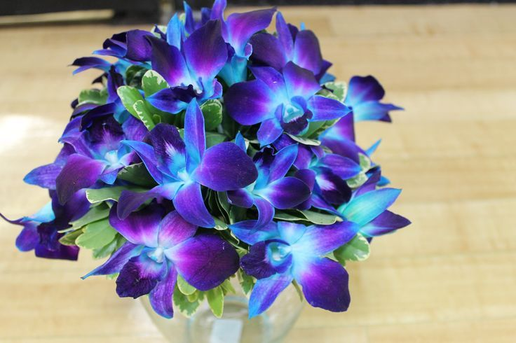 Blue and Purple Orchid Bouquet | Wedding-ness | Pinterest