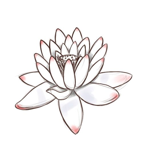 Czeshop images how to draw a lotus flower step by step for kids source mightylinksfo