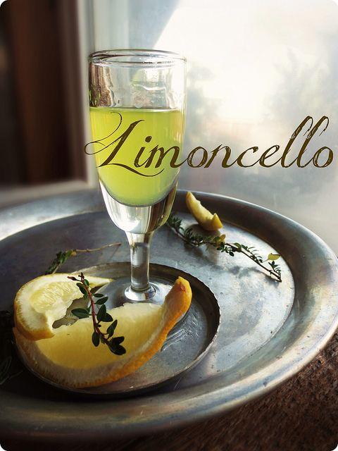 Homemade Limoncello   MY FAVORITE ITALIAN FOOD & WINES   Pinterest