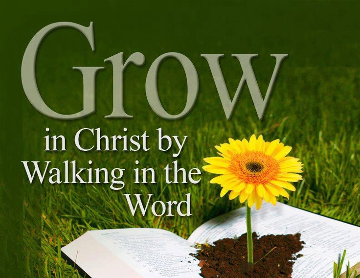 Grow in Christ | HIS WALK---FOLLOW HIS STEPS--- | Pinterest Faith In God Quotes And Sayings