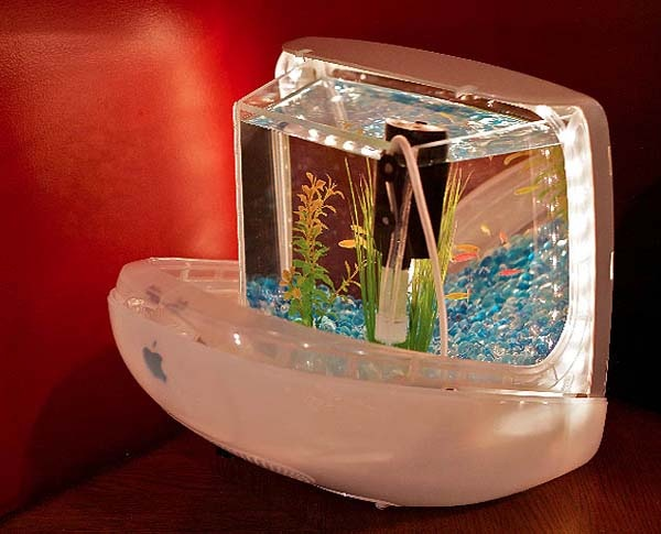 small aquarium tank made of computer shell Plastic recycling and ...