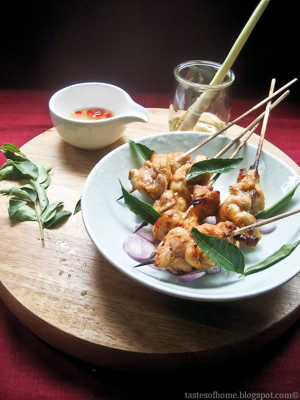 Thai Style Roasted Chicken Satay Skewers | Chicken Recipes | Pinterest