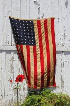 poppy on memorial day