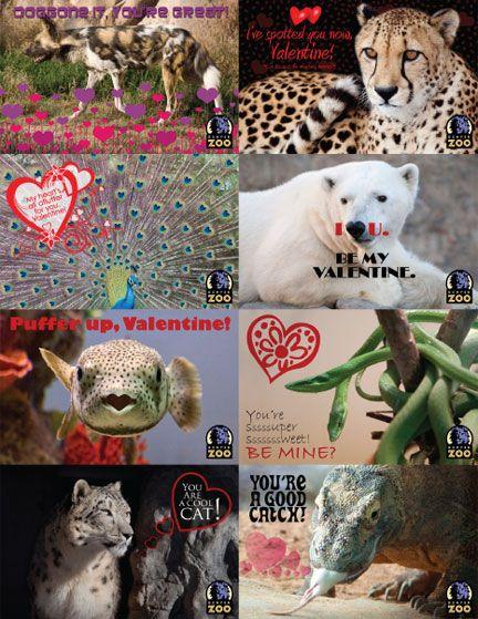 denver zoo valentine cards