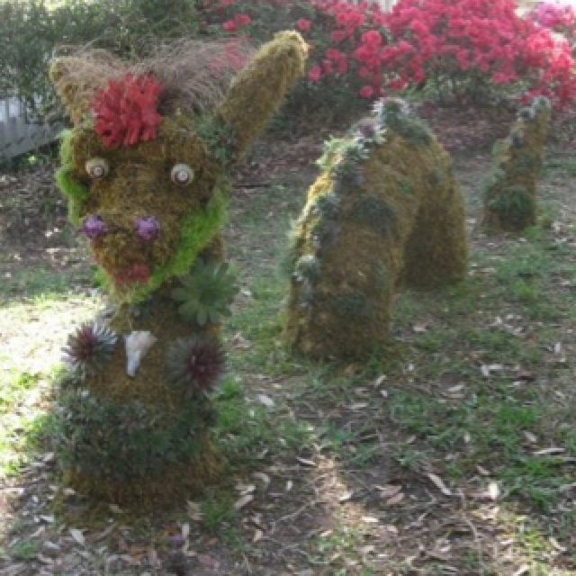 Nessie topiary decorated with succulents, shells and coral.