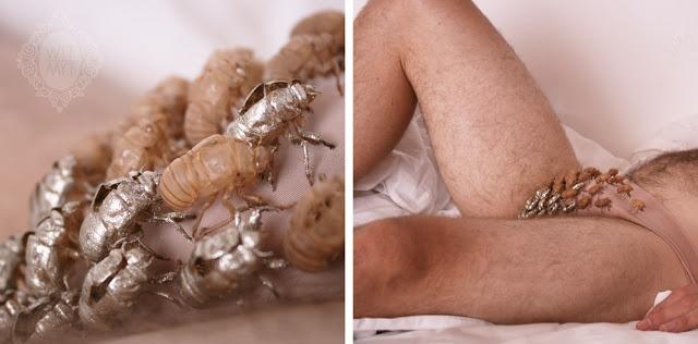 Pubic Lice (Crabs): Symptoms, Risk Factors and Treatment ...