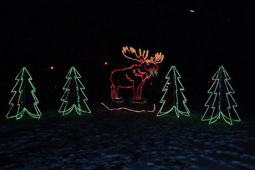 Lights Before Christmas - Toledo Zoo | TOLEDO ZOO LIGHTS | Pinterest