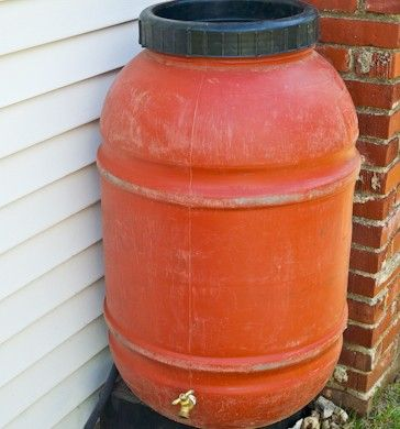 Diy rain barrel grow it pinterest for Diy small rain barrel
