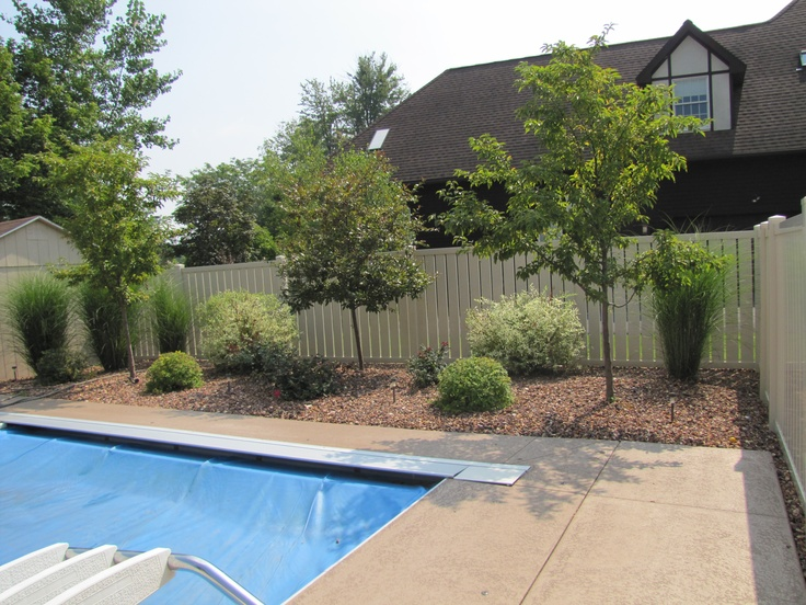Landscaping pool area landscaping ideas for Landscape design for pool areas