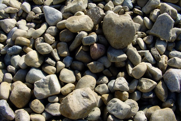 creek gravel | Rocks, Fossils, & Shells | Pinterest