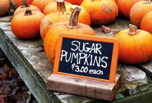 Pumpkin Quick Bread from Leite's Culinaria. http://punchfork.com ...