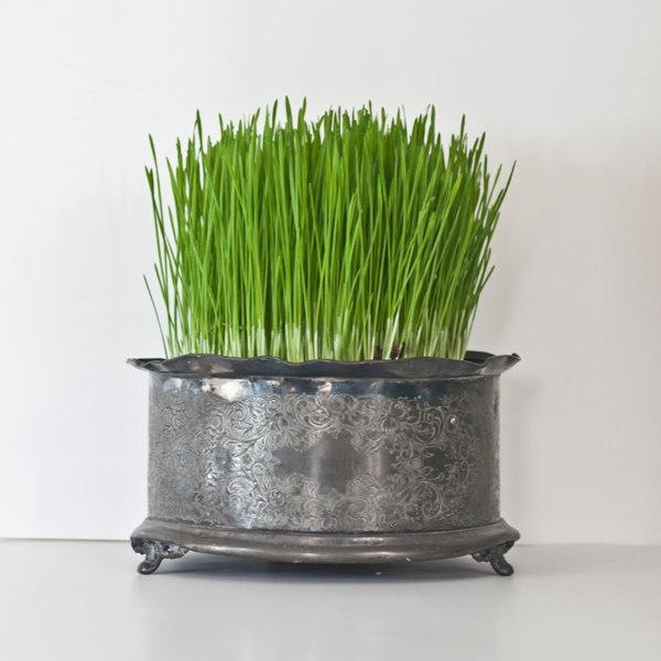 porcelain swan planter vase vintage flower pot bird. Black Bedroom Furniture Sets. Home Design Ideas