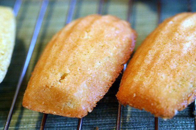 Classic Madeleines | Favorite Recipies | Pinterest
