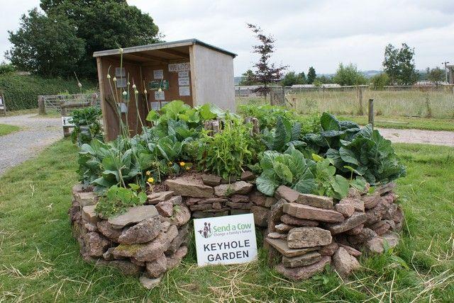 African keyhole garden natural recycled garden ideas for Keyhole garden designs