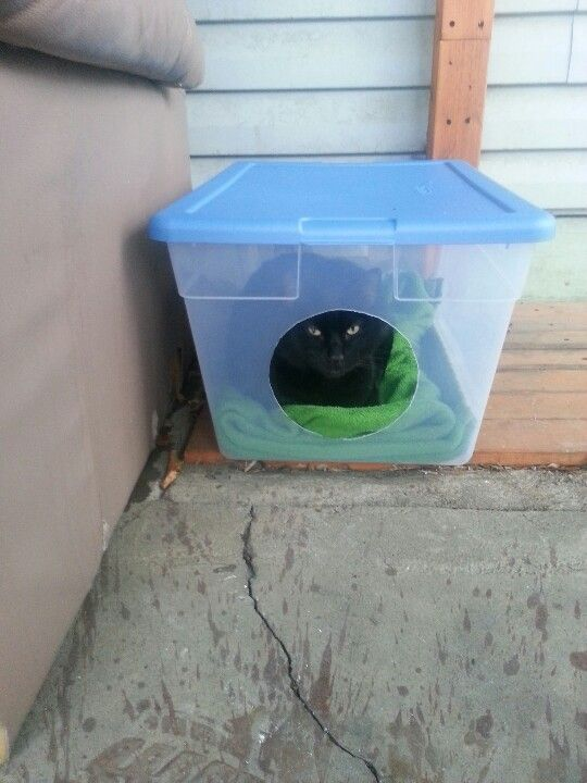 DIY outdoor cat shelter invented by Benjamin Anonymous.