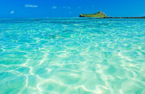 Turquoise Sea, Oahu, Hawaii...went Snorkeling here at Captain Cook, went to North Shore and be beautiful Kailua Beach. So want to go back here...lived on the big Island for a short while!!