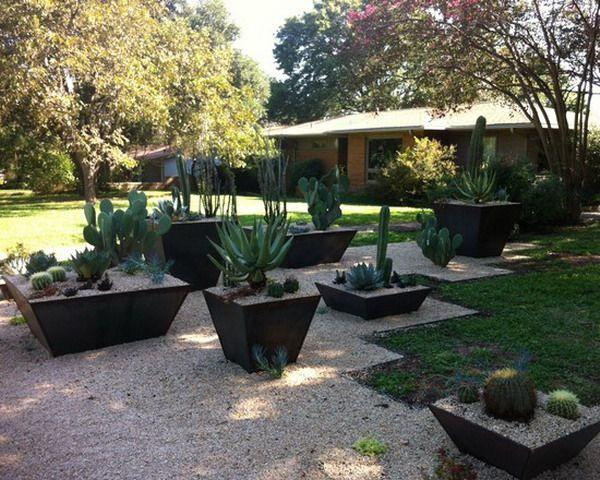 ... Design on Square How to Decorate Patio Cactus Planters Design Ideas