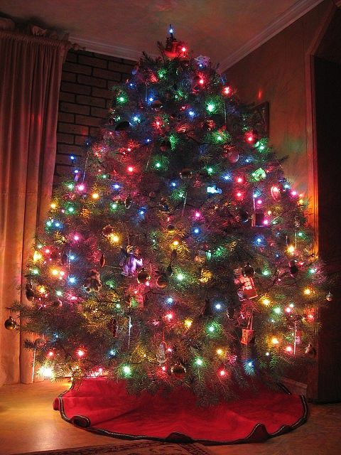 Pin by pauline bremer helderle on christmas trees pinterest for Christmas tree with large bulbs