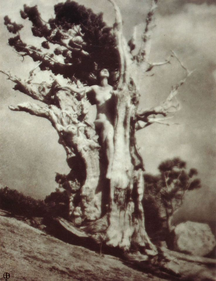 Anne W. Brigman, Invictus, 1925 / From Pictorialism into Modernism: The Clarence H. White School of Photography