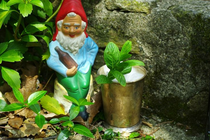 Soused Gnome