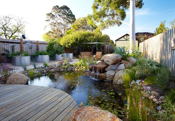 Here, a blank back yard became a habitatrich sustainable garden The