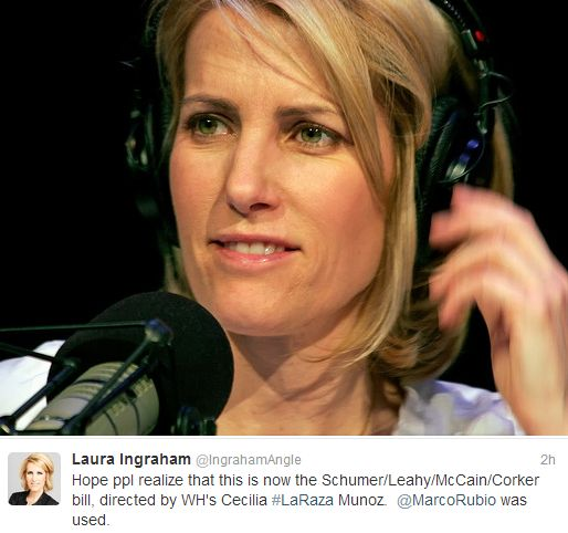 Laura Ingraham: Pin By Rebecca Hogan On Goverment Issues