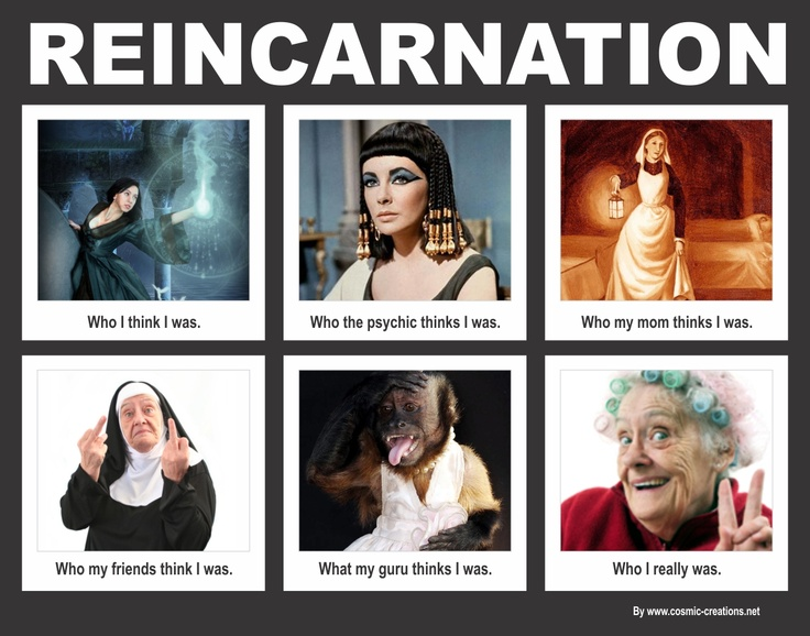 Reincarnation | Reincarnation | Pinterest