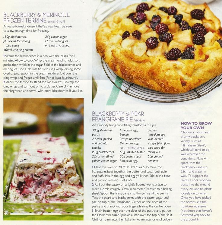 Blackberry & Meringue Frozen Terrine, Blackberry & Pear Frangipan Pie