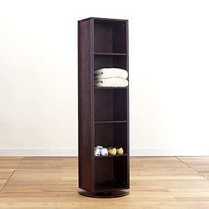 Turner Swivel Tower - mirror on one side, shelves on the other. $199.99 at World Market.