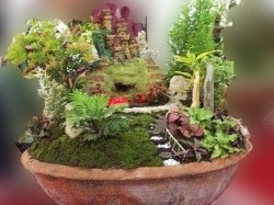 Dish Gardening Pictures and designs DIY Crafts Pinterest